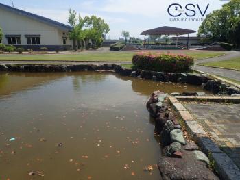 施工前の池